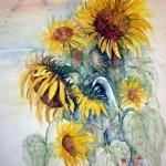 Hermi Kürner, Aquarell, Sonnenblumen